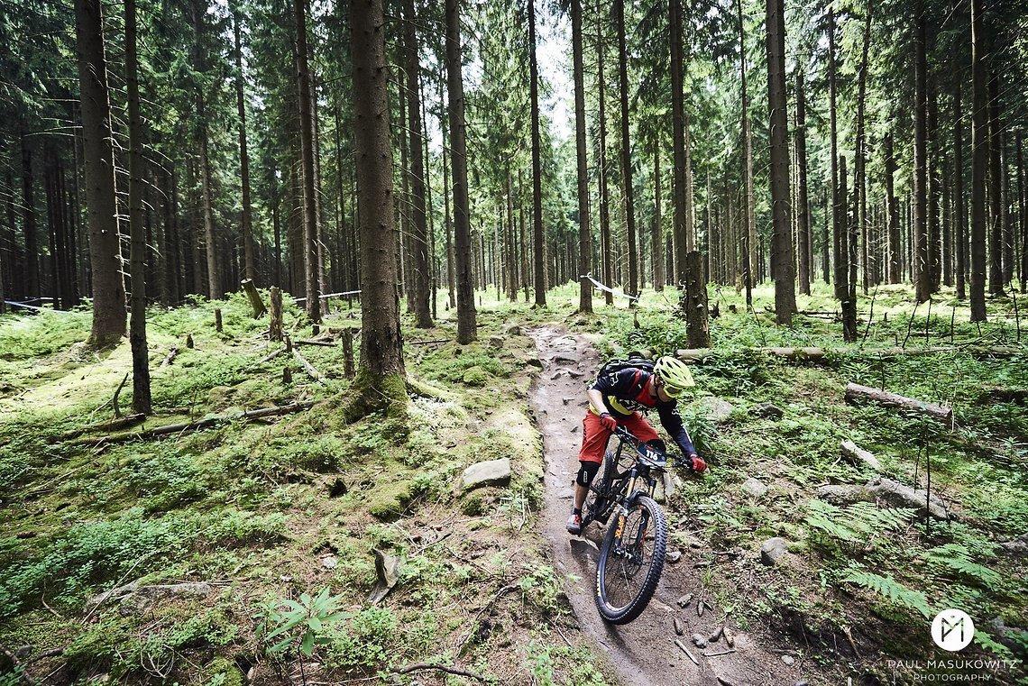 Das Trailcenter Rabenberg bietet eine Menge Trails