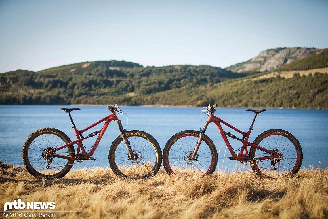 Nah dran aber doch unterschiedlich - zwei Laufradvarianten in einem Bike