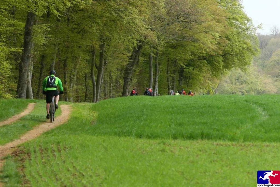 Der Weg ist das Ziel zum Trail.