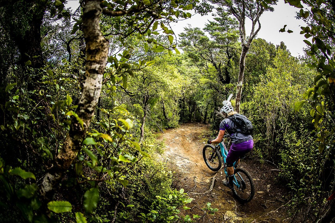 Hübsche Verzierung, die Anita da auf dem Helm durch den Beech Forest Dschungel trägt …