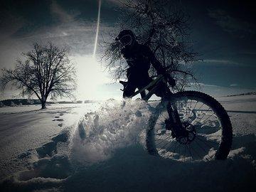Zang im Schnee