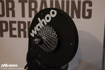 Wahoo-2184