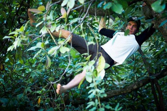 """Avocado-Äffchen - Jamie plückt uns die reifen Früchte direkt vom Baum aus seinem """"Garten"""". Genial!"""