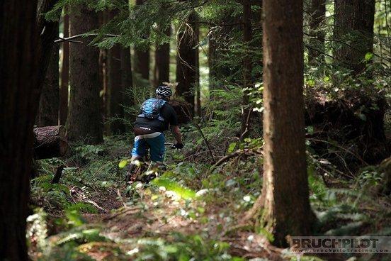 MTB-News-Mann Thomas auf dem Trail