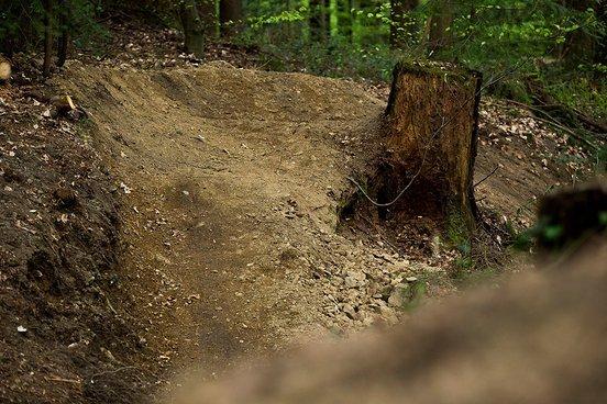 """Der neu gebaute Trail wird nicht umsonst """"Murmelbahn"""" genannt. Grund für diese Namensgebung dürften die unzähligen Anlieger sein, die in die Natur installiert wurden."""