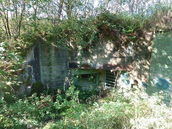 Bunker 139/140, Doppelgruppenunterstand mit angehängtem Kampfraum im Buhlert. Er ist ganzjährig versiegelt und dient als Fledermausunterschlupf