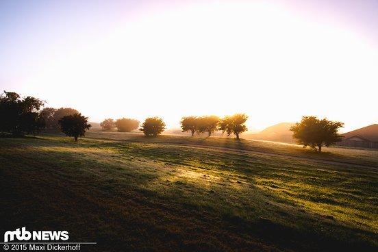 Guten Morgen, guten Morgen, guten Morgen Sonnenschein...
